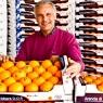 Positiva la campagna di commercializzazione dell'arancia dop di Ribera Riberella